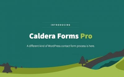 What To Expect from the Brand New Caldera Forms Pro Plugin