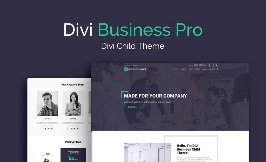 Divi Business Pro Divi Child Theme