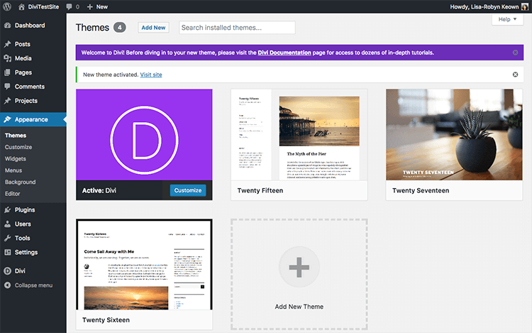 Successful Install of Divi Theme on WordPress