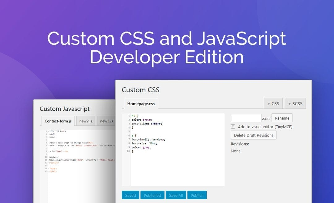Plugin Review: Custom CSS and Javascript Developer Edition