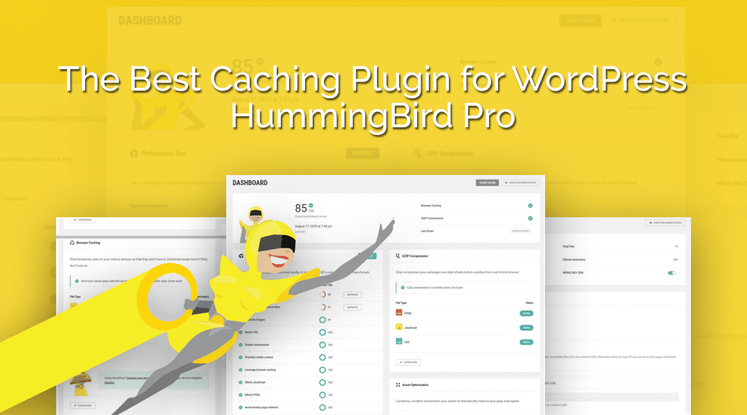 The Best Caching Plugin for WordPress | HummingBird Pro