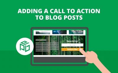 How to Add a Newsletter Sign Up Call to Action to Every Blog Post