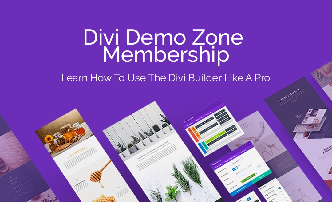 Divi Demo Zone | Learn How To Use the Divi Theme for WordPress